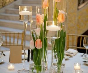 tulips and boda image