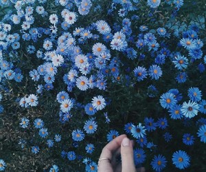 blue, Dream, and flowers image