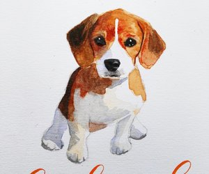 art, cute, and animals image