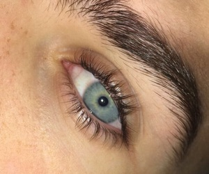 blue eyes, eyebrows, and lashes image