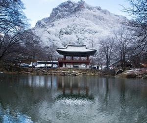 southkorea winter snow image