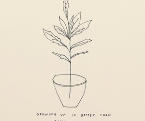 quote, beauty, and plants image