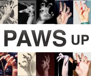 Lady gaga, germanotta, and paws up image