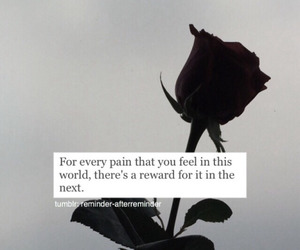 quotes, islam, and pain image