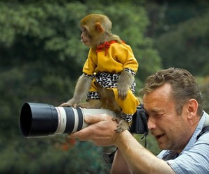 funny pictures, funny images, and funny monkey on camera image