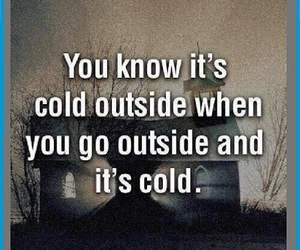 funny and cold image