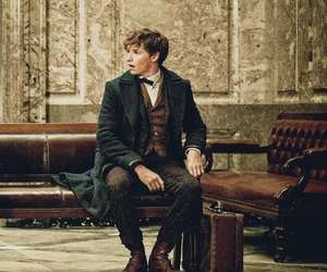 book, fantastic beasts, and newt scamander image