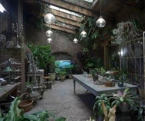garden, green, and magic image