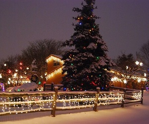 christmas, december, and winter image