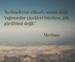 mevlana and türkçe sözler image