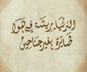 مصري, كلمات, and ﺍﻏﺎﻧﻲ image