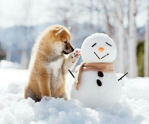 ❄, 🐕, and ⛄ image