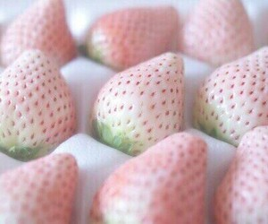 strawberry, pink, and food image
