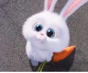 rabbit and the secret life of pets image