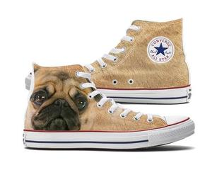 converse, dogs, and fashion image