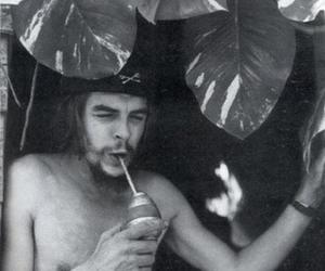 che, Che Guevara, and mate image