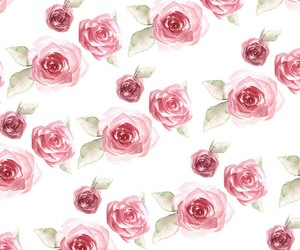 flowers, rose, and pattern image