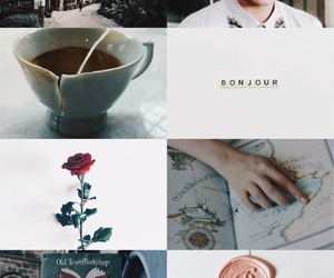 aesthetic, art, and beauty and the beast image