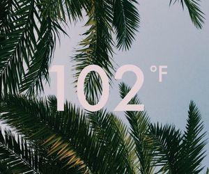 summer, Hot, and wallpaper image