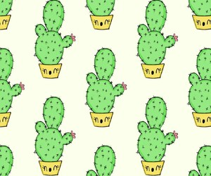 cactus and patterns image