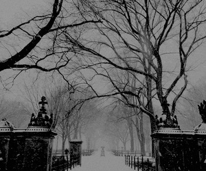 snow, winter, and gothic image