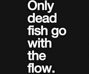 quotes, fish, and dead image
