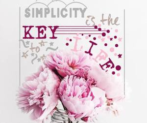 flowers, pink, and simplicity image