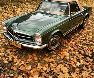 autumn, Best, and car image