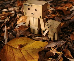 leaves, autumn, and danbo image