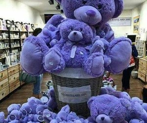 bear, purple, and teddy bear image