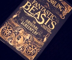 book, newt, and fantastic beasts image