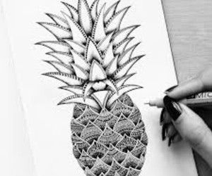 drawing, pineapple, and art image