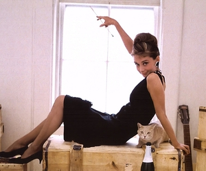 audrey hepburn, cat, and audrey image