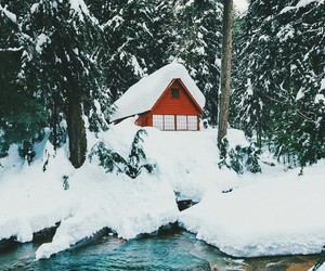 cold, house, and nature image