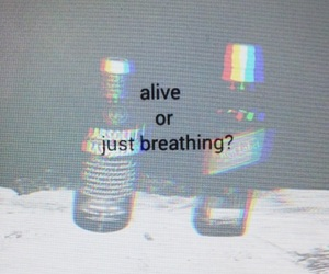 alive, drunk, and holographic image