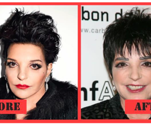 sex and the city, bad plastic surgery, and liza may minnelli image