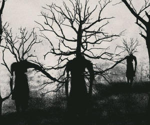 tree, dark, and horror image