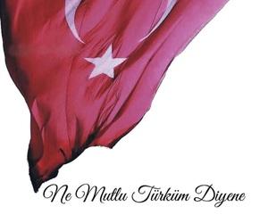 proud, turk, and turkey image