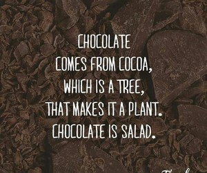 chocolate, cocoa, and plant image
