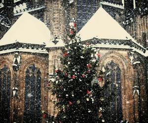 christmas, snow, and 🎄 image