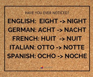 eight, english, and french image