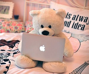 apple, teddy, and cute image