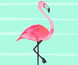wallpaper, flamingo, and background image