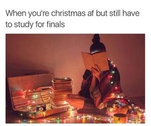 christmas and funny image