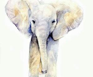 art, elephant, and watercolor image