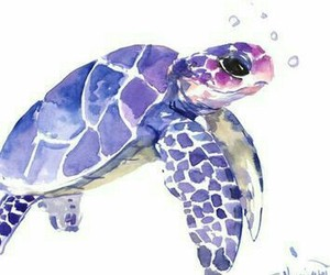 art, turtle, and watercolor image