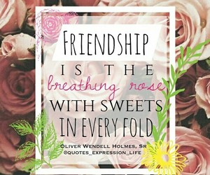 friendship, roses, and inspire image