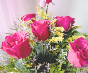 roses flowers image