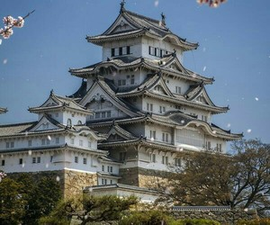 castle and japan image