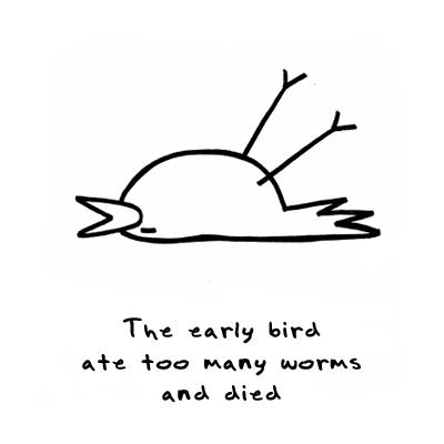 bird, lol, and early bird image